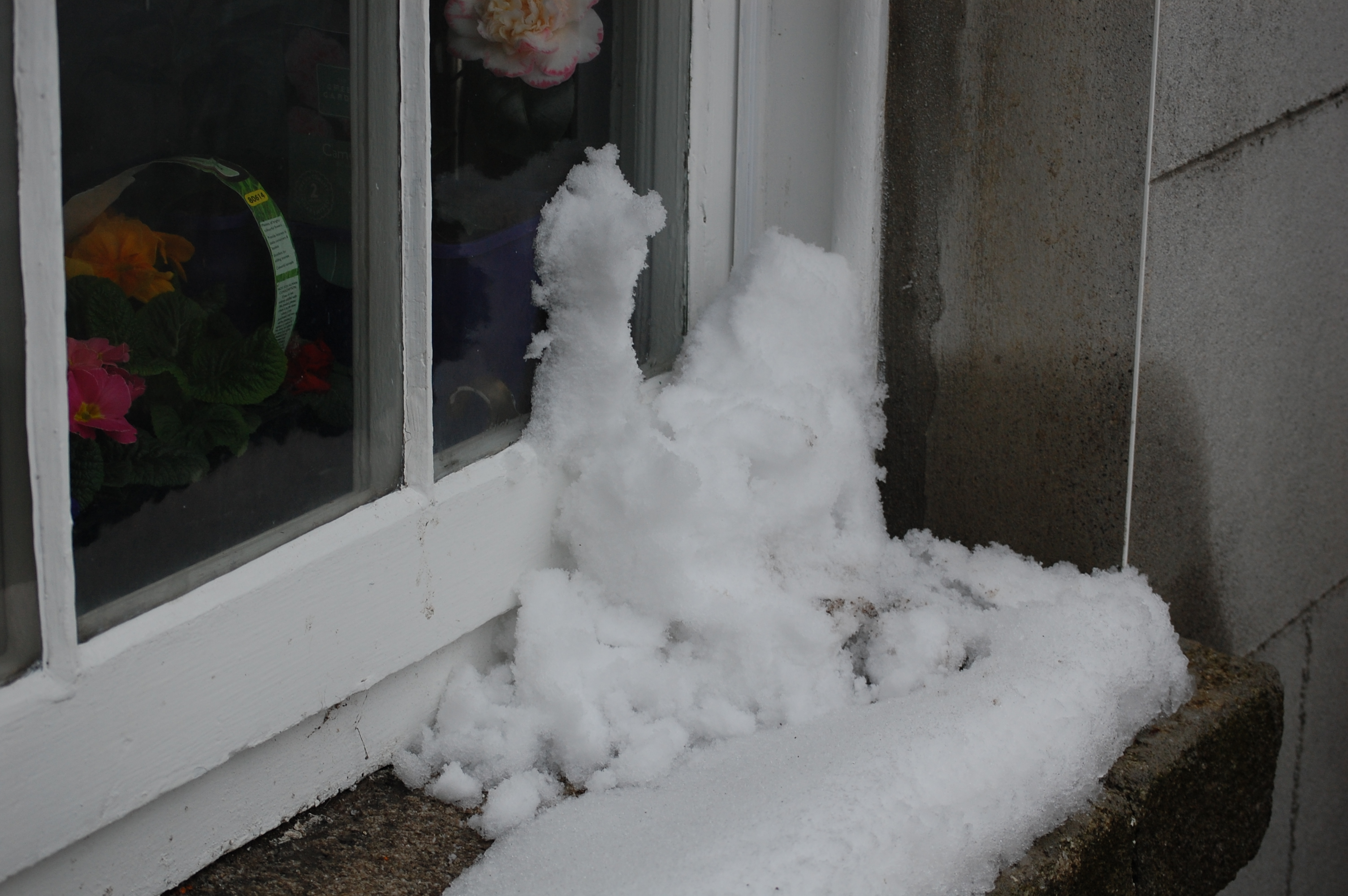Window frames, mechanisms and seals can be damaged by ice